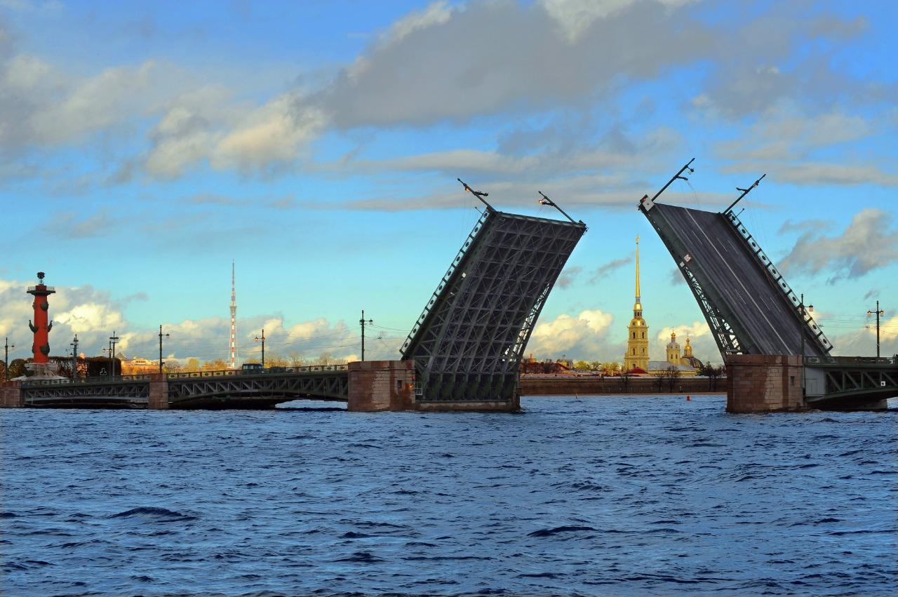 С соотечественниками в Санкт-Петербурге обсуждены совместные гуманитарные проекты