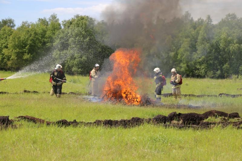 Казахстанские и российские спасатели отработали взаимодействие при тушении трансграничного лесного пожара
